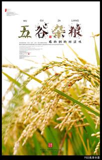 五谷杂粮之谷宣传海报设计 PSD