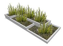 室内植物池