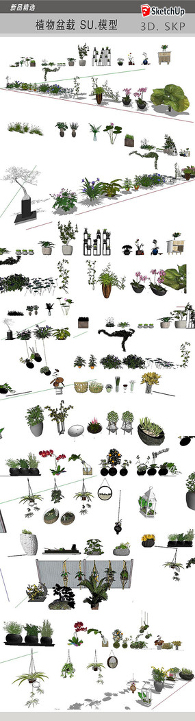 植物盆栽  skp
