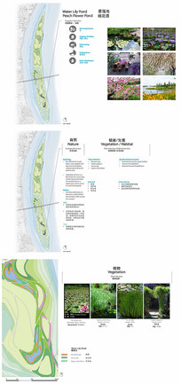 生态桃花潭景观分析