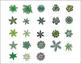 手绘平面植物素材 PSD