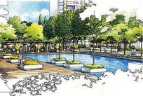 小区休闲泳池区手绘图