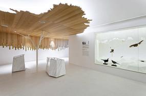 博物馆展示设计 JPG