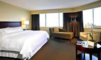 单人大床房客房设计