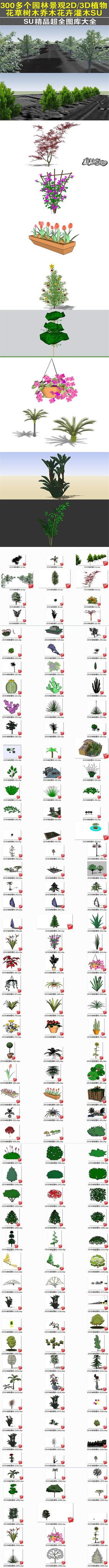 植物花草树木乔木花卉灌木