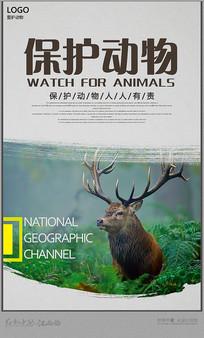小清新动物主题海报