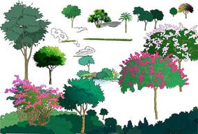 植物立面手绘素材