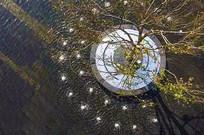 树池创意设计 JPG