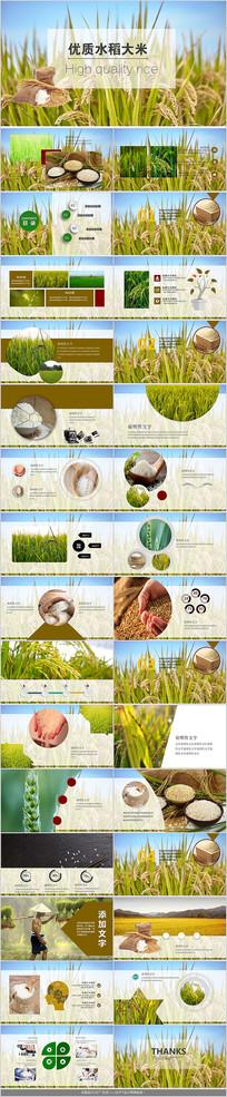 绿色农产品大米PPT模板