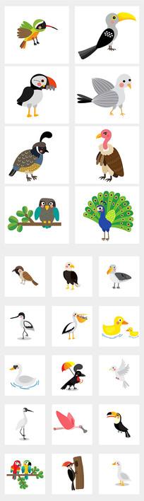 飞禽小鸟插图