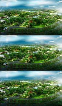 生态绿色园林视频