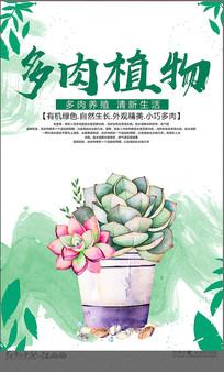 多肉植物海报设计
