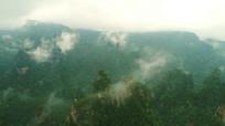 山里云雾实拍视频