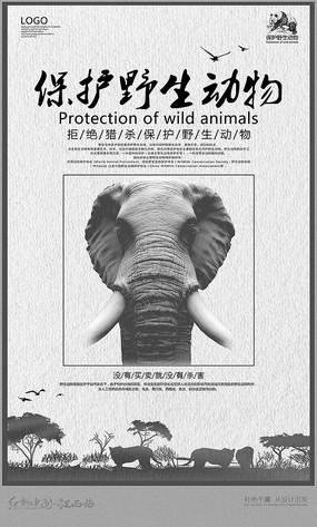 保护野生动物海报宣传