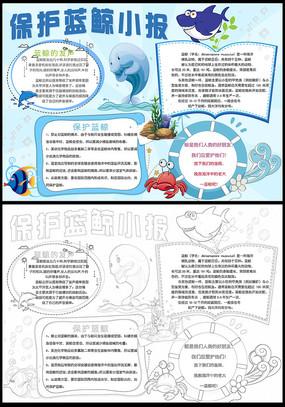卡通漂亮保护蓝鲸小报