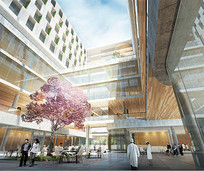 医院庭院设计效果图