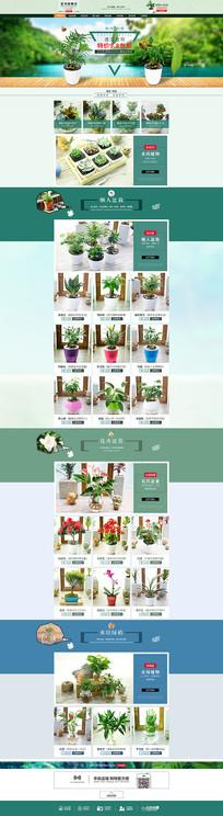 天猫首页海报模板设计多肉植物