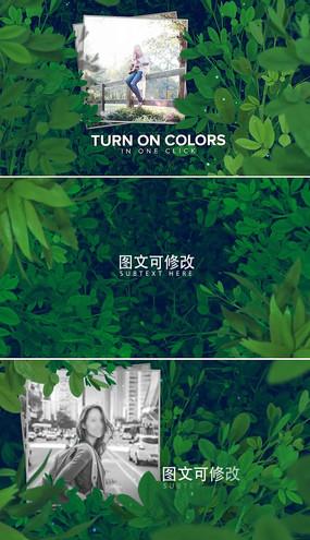清新自然绿叶相册模板