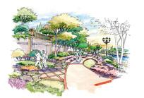 扬州森林湖项目C节点手绘