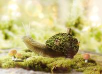背负沉重的蜗牛合成海报素材