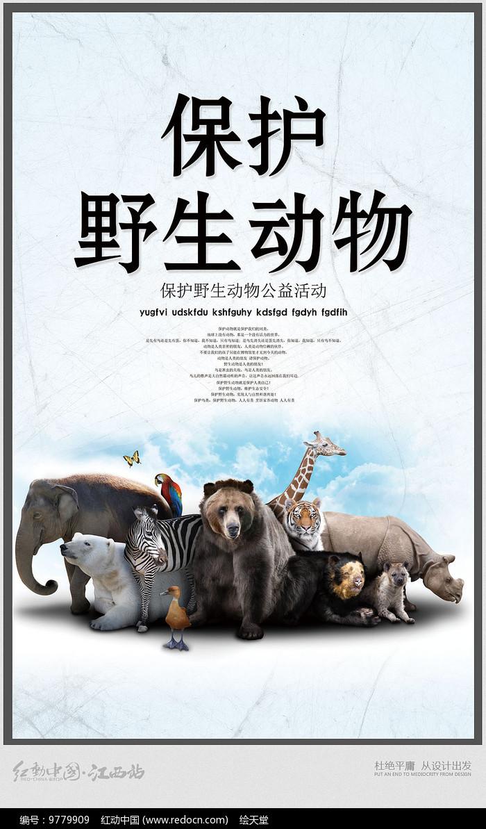 原创设计稿 海报设计/宣传单/广告牌 海报设计 简约宣传保护野生动物图片
