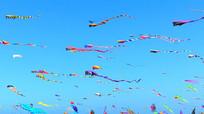 自然风光和彩色风筝实拍视频