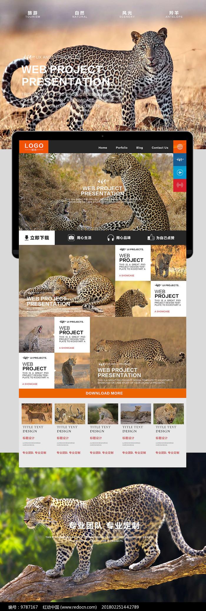 豹子自然风光海报图片