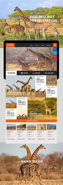 长颈鹿自然风光海报 PSD