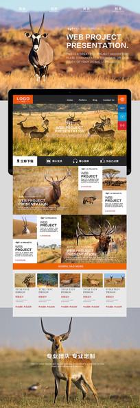 羚羊自然风光海报
