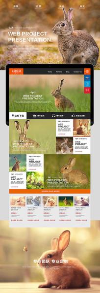 兔子自然风光海报 PSD