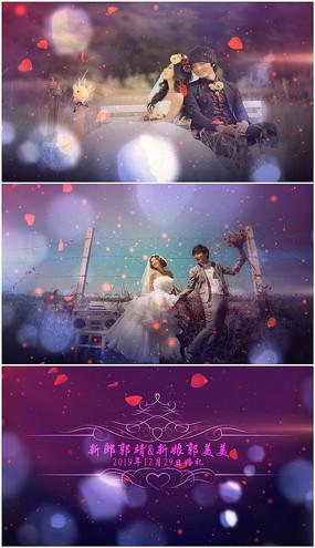婚礼视频相册PR模板