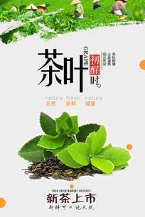 茶叶茶道海报 PSD