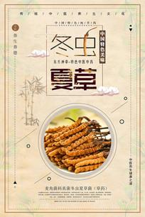 时尚中国风冬虫夏草中药海报