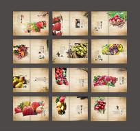 水果宣传画册模板设计 CDR