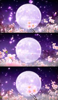 花瓣飘逸大月亮唯美古典视频