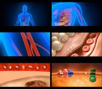 人体血管新陈代谢医学视频素材