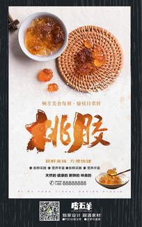 中国风养生桃胶促销海报