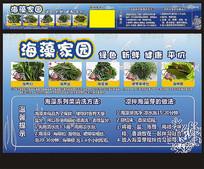 海藻海带海产品海报