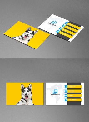 宠物名片狗粮卡片设计