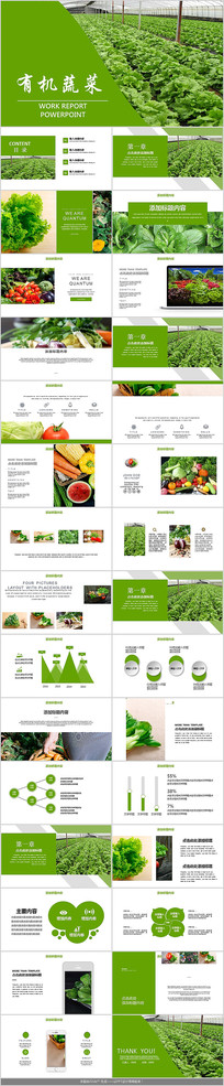 生态有机蔬菜PPT模板