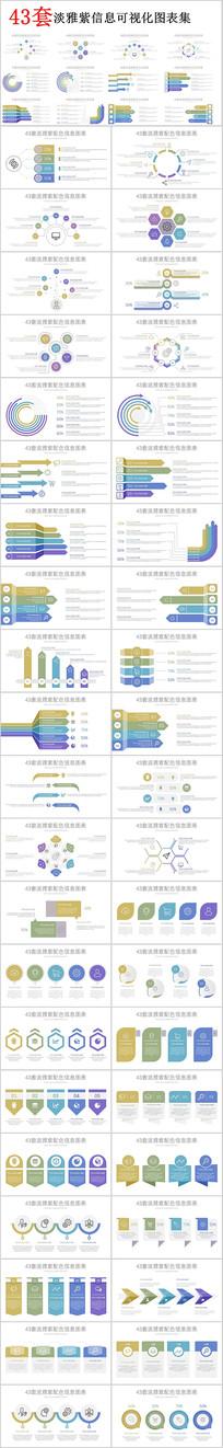 淡雅紫信息可视化PPT图表