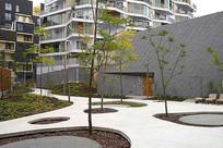 景观树池设计意向 JPG