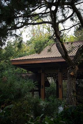 公园传统中式休闲亭子