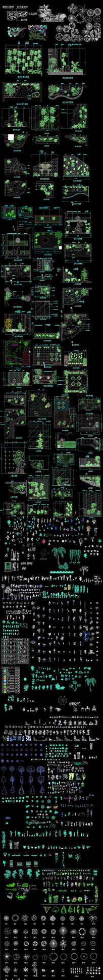 植物CAD素材集  dwg