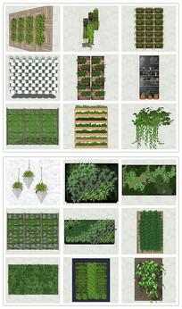 垂直绿化植物墙花箱SU模型