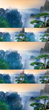 中国风高山白鹤仙境典雅舞台