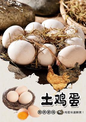 农村土鸡蛋海报