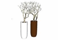 枯树枝装饰花瓶