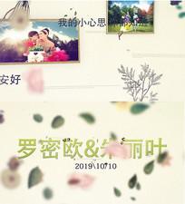 唯美婚礼相册AE模板