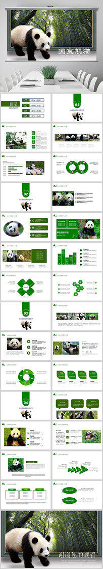 动物国宝大熊猫动物保护PPT